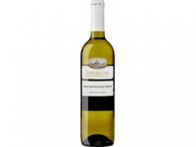 заказать: Тихие вина - Badagoni Alazani Valley Blanc