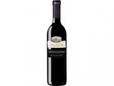 заказать: Тихие вина - Badagoni Alazani Valley Red